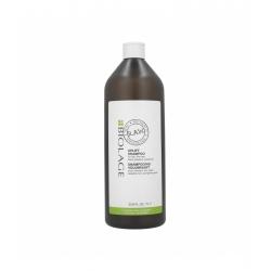 MATRIX BIOLAGE R.A.W RECOVER Shampoo for fine hair 1000ml