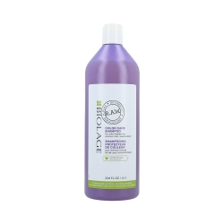 MATRIX BIOLAGE R.A.W RECOVER  CARE  Shampoo for Colour-Treated Hair 1000ml