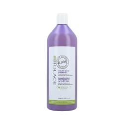 MATRIX BIOLAGE R.A.W RECOVER CARE Shampoo for Colour-Treated Hair 1000ml